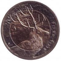 Олень. Монета 1 лира, 2012 год, Турция.