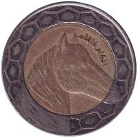 Лошадь. Монета 100 динаров. 2010 год, Алжир.