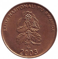 Цветок кофейного дерева. Монета 5 франков. 2003 год, Руанда. Из обращения.