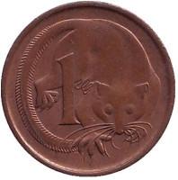 Карликовый летучий кускус. Монета 1 цент, 1982 год, Австралия.