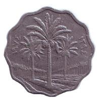 Пальмовые деревья. Монета 10 филсов. 1974 год, Ирак.