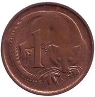 Карликовый летучий кускус. Монета 1 цент, 1984 год, Австралия.