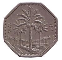 Пальмовые деревья. Монета 250 филсов. 1981 год, Ирак.