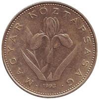 Венгерский ирис. Монета 20 форинтов. 1993 год, Венгрия.