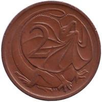 Плащеносная ящерица. Монета 2 цента. 1970 год, Австралия.