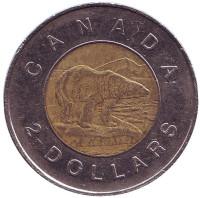Полярный медведь. Монета 2 доллара. 2008 год, Канада.