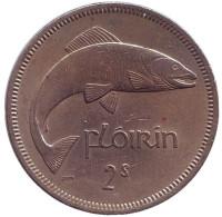 Лосось. Монета 2 шиллинга (1 флорин). 1964 год, Ирландия.