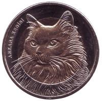 Кошка. Монета 1 лира, 2010 год, Турция.