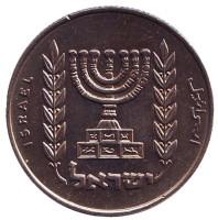 Менора (Семисвечник). Монета 1/2 лиры. 1966 год, Израиль. (XF-UNC).