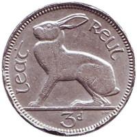 Заяц. Монета 3 пенса. 1956 год, Ирландия. Состояние - F.