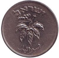 Листья винограда. Монета 50 прут. 1954 год, Израиль. (Магнитная)