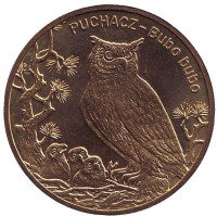 Филин (Пугач). Монета 2 злотых, 2005 год, Польша.