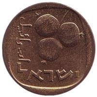 Гранат. Монета 5 агор. 1968 год, Израиль. UNC.