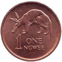 Трубкозуб. (Аардварк). Монета 1 нгве. 1969 год, Замбия.
