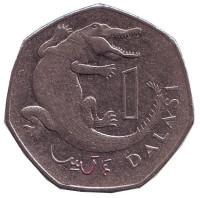 Африканский узкорылый крокодил. Монета 1 даласи. 2014 год, Гамбия.