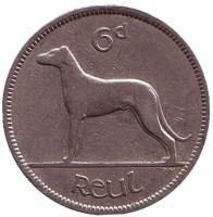 Ирландский волкодав. Монета 6 пенсов. 1939 год, Ирландия.