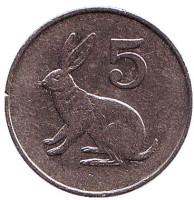 Кролик. 5 центов. 1983 год, Зимбабве.