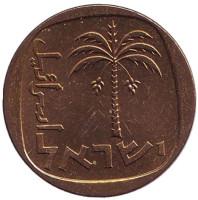 Пальма. Монета 10 агор. 1968 год, Израиль. UNC.