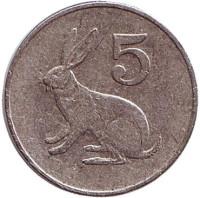 Кролик. 5 центов. 1988 год, Зимбабве.
