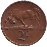 Белохвостый гну. Монета 2 цента. 1978 год, Южная Африка.