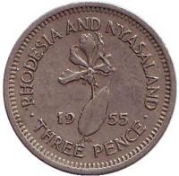 Глориоза (Пламенная лилия). Монета 5 центов. 1955 год, Родезия и Ньясаленд.