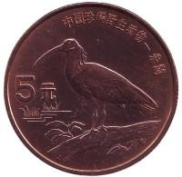 """Красноногий ибис. Серия """"Красная книга"""". Монета 5 юаней. 1997 год, Китай."""