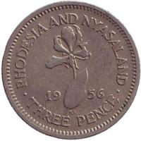Глориоза (Пламенная лилия). Монета 5 центов. 1956 год, Родезия и Ньясаленд.