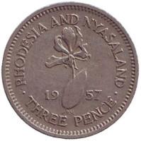 Глориоза (Пламенная лилия). Монета 5 центов. 1957 год, Родезия и Ньясаленд.