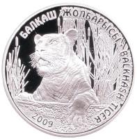Балхашский тигр. Животные стран ЕврАзЭС. Монета 500 тенге. 2009 год, Казахстан.