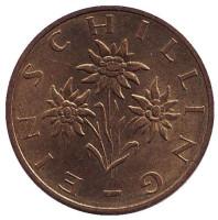 Эдельвейс. Монета 1 шиллинг. 1986 год, Австрия.