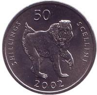 Мандрил. (Обезьяна). Монета 50 шиллингов. 2002 год, Сомали.