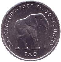 ФАО. Слон. Монета 5 шиллингов. 2000 год, Сомали.