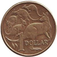 Кенгуру. Монета 1 доллар. 2010 год, Австралия.