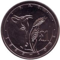 50 лет ФАО. Корова. Монета 1 фунт. 1995 год, Кипр.