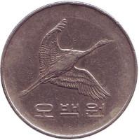 Маньчжурский журавль. Монета 500 вон. 1984 год, Южная Корея.
