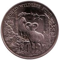 25 лет Всемирному фонду дикой природы. Кипрский муфлон. Монета 1 фунт. 1986 год, Кипр.