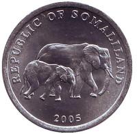 Слоны. Монета 5 шиллингов. 2005 год, Сомалиленд.