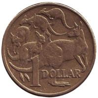 Кенгуру. Монета 1 доллар. 2004 год, Австралия.