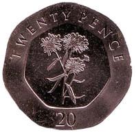 Цветы. Монета 20 пенсов. 2016 год, Гибралтар. UNC.