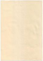 XII Всемирный фестиваль молодёжи и студентов 1985 года. Лист бумаги с водяными знаками. Гознак, Россия.