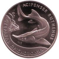 Стерлядь пресноводная. Монета 2 гривны, 2012 год, Украина.