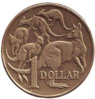 Кенгуру. Монета 1 доллар. 1998 год, Австралия.