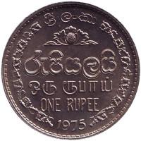 Монета 1 рупия. 1975 год, Шри-Ланка. UNC.