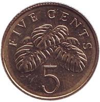 Монстера деликатесная. Монета 5 центов. 2009 год, Сингапур.