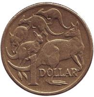 Кенгуру. Монета 1 доллар. 2006 год, Австралия.