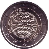 Всемирный день пчёл. Монета 2 евро. 2018 год, Словения.