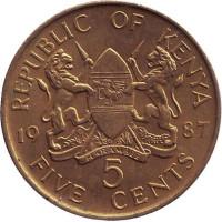 Монета 5 центов. 1987 год, Кения. XF.