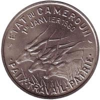 Африканские антилопы. (Западные канны). Монета 50 франков. 1960 год, Камерун.