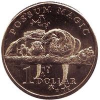 Употребляя специальную еду, опоссум останется видимым навсегда. Монета 1 доллар. 2017 год, Австралия.