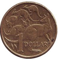 Кенгуру. Монета 1 доллар. 2008 год, Австралия.